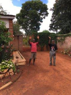 Malawi_13.JPG